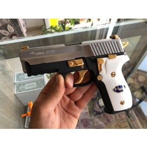 SİG SAUER P229 TWO TONE